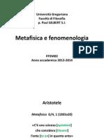 Metafeno01.pdf