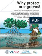 201001WhyProtectMangroves.pdf