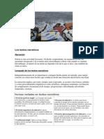 textosnarrativos.pdf
