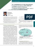 Differences Between Comoro and Menado Raja Ikan-Japanese Research