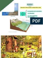 biomedicina-ecosistemas