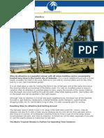 A Guide To Vilas Do Atlantico