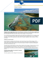 Arraial d'Ajuda Bahia Brazil A Guide