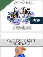 Joint Venture.