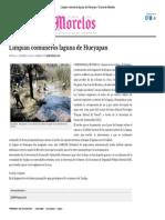 Limpian Comuneros Laguna de Hueyapan _ Diario de Morelos