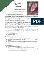 taxonomy student handout copy