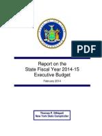 Executive Budget 2014