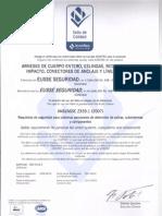 Certificación arnés