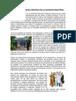 4.3 La Formacion Del Individuo en La Sociedad Industrial