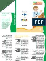 folder_prostata_0736(web_20071120) (1)