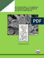 TLCs y medicina tradicional.pdf
