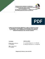 Paginas Preliminares Charo