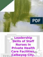 leadership skills of staff nurses in private health care facilities, calbayog city