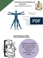 expo distribucion.pptx