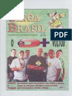 Ginga Brasil 176