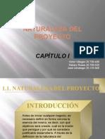 1-NaturalezadelNegocio
