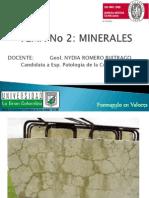 2. MINERALES