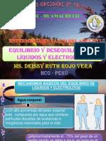 Balance de L´quidos y electrolitos 2013