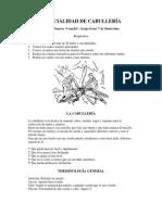 especialidad de cabulleria.pdf