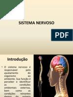 Aula Sistema Nervoso Fufs