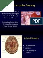 Cerebrovascular Anatomy 1