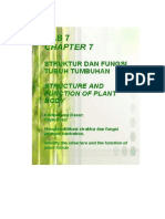 Struktur Fungsi Organ Tumbuhan PDF 2