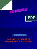 ecologie_ecosistemul