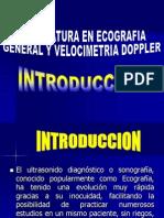 1.- INTRODUCCION