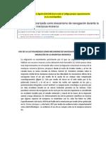 USO DE LA LUZ POLARIZADA COMO MECANISMO DE NAVEGACIÓN DURANTE LA MIGRACIÓN EN LA MARIPOSA MONARCA