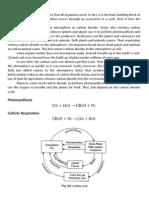 Biogeo Chemical Cycles