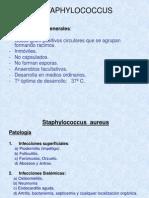 08 Stafilo Strepto Enterococos Dr.guevara