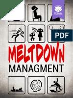 Crash Course in Meltdown Management Complet Version