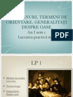 Lp1 Generalitati