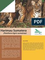 Harimau Bahasa