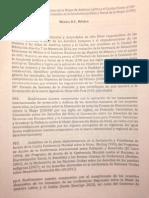 Declaración Final español RED