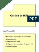 DNS 1