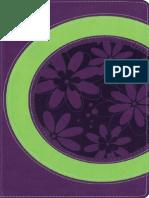 NIV FAITHGIRLZ BIBLE, ITALIAN DUO TONE - SPRING GREEN/PETAL PURPLE