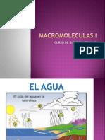 Macromoleculas i