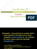 Macromoledulas II Prot
