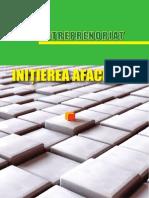 antreprenoriat (management)