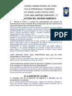 ESTRUCTURA DEL SISTEMA NUMÉRICO  EL ALGORITMO DE LA SUMA