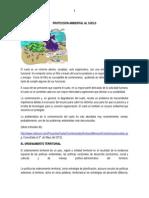 Proteccion Ambiental Del Suelo Alfa