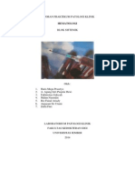 Laporan Praktikum Patologi Klinik Hapusan Darah