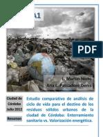 Resumen (Vf 24-05-2012) ANEXO 1 Tocado Xx