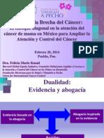 Cerrando la Brecha del Cancer