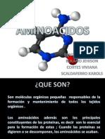 Proteinas y Aminoacidos Firmes