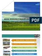 Brasil Biomassa e Energia Renovavel PT
