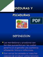13. MORDEDURAS Y PICADURAS