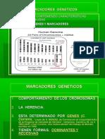 MARCADORSGENETICOSLIFII06sept11