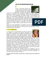 paz_guerreira.pdf
